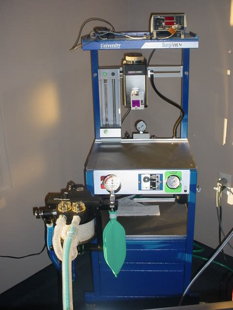 veterinary cbc machine